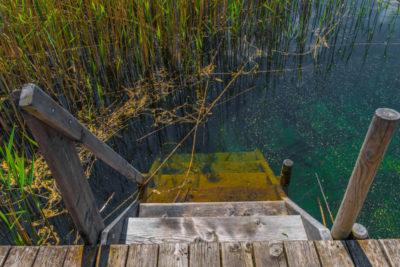 artemisia - plan d'eau